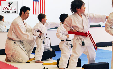 Wushu Martial Arts