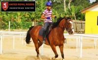 United Royal Rider