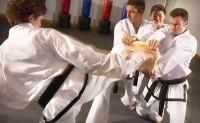 Japan Shotokan Karate