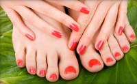 In Touch Beauty Parlour