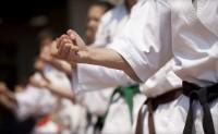 Shito Ryu Shiko Karate Do